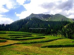 Pakistan: Lalazar often termed as most beautiful place on earth