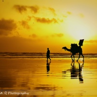 Pakistan Clicks : A journey through my lens - Part 1